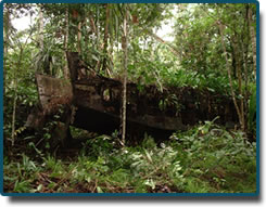 Landing barge used by allied forces during the war and then dragged 1.5 klms inland to where it now rests just 15 klms east of Alotau